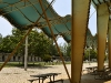 tropical-park-equestrian-center-light-and-shade